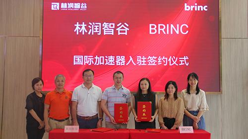 喜讯|祝贺Brinc国际加速器入驻林润智谷